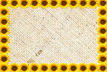 Sun flowers background with Natural burlap hessian sacking