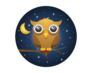 Night Watch Owl