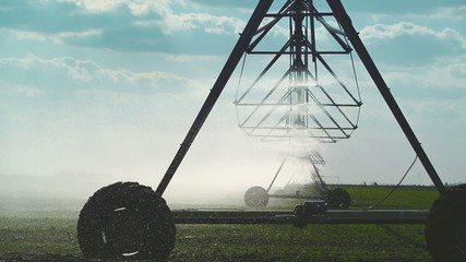 Farming Irrigation Sprinklers System in Cultivated Land