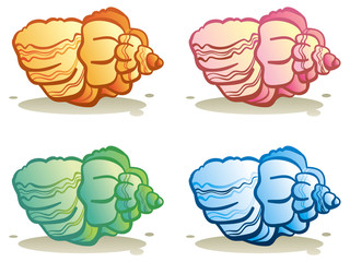 Different colored shells on a white background