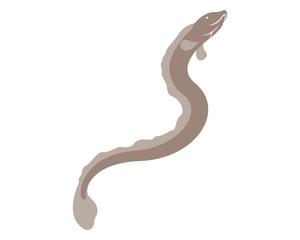 Eel Silhouette