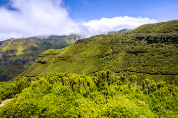 Green hill, Madeira island, Portugal
