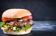 Tasty burger - 82011709