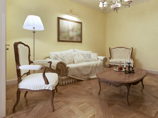 Elegant living room classic style