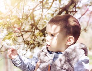 Baby berührt Frühlingsblüten