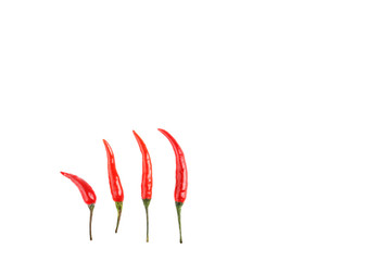 Chili peppers on a white background.