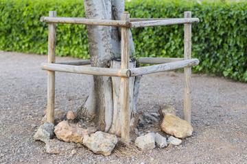 Protección de árbol.