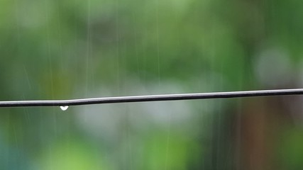 water droplet drops from the electricity wire