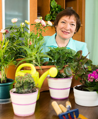 Mature housewife  working with fresh flowers in pots