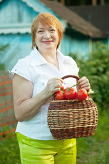 mature woman with tomato harvest