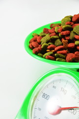 dog food on weighting scale