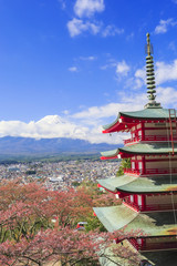 忠霊塔と富士山(縦)