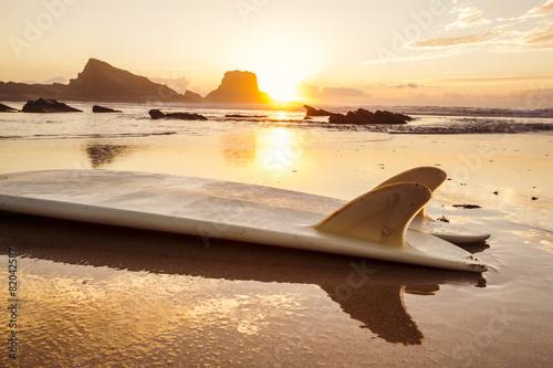 Surfboard - 82042587