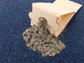 Staubsaugerbeutel mit viel Schmutz auf Teppich