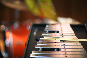 Xylophone with a pair of mallets
