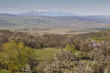 romanian countryside