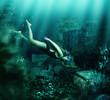 Woman swimming underwater. Adventure - 82049915