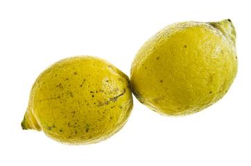 Paar Zitronen