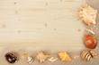 Muscheln mit Hintergrund aus Holz