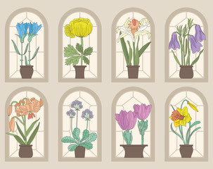 Vintage Style Flowers On Window Sills(Vector Set)