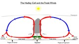 Hadley Cell and Trade Winds