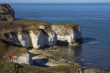 Sea Cliffs - Flamborough Head - Yorkshire - England