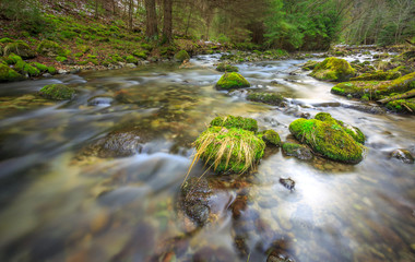 Mountain river with green stones