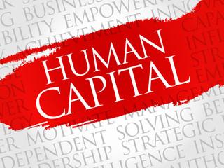 Human capital word cloud, business concept