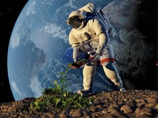 Astronaut grass plants.