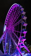 canvas print picture - hong kong observation wheel