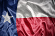 Leinwanddruck Bild - shining texas state flag