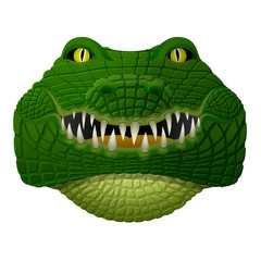 Crocodile face looks ahead. Front view of alligator head