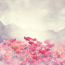 """Постер, картина, фотообои """"Poppy Flowers"""""""