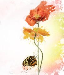 Poppy Flowers Watercolor