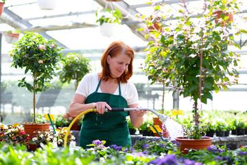 Gärtnerin gießt Pflanzen im Gartencenter