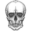 human skull on a white background. sketch - 82066964