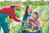 Farmer showing vegetables harvest to kid girls
