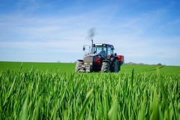 Grünes Getreidefeld, Schlepper mit Düngerstreuer unscharf