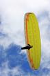 paraglider - 82073592