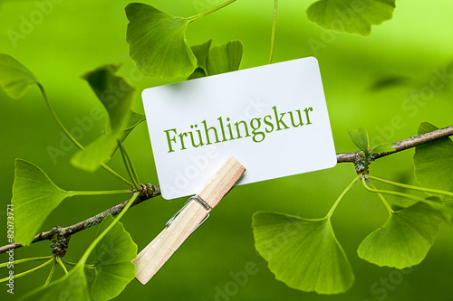 Frühlingskur - 82073771