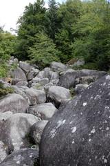 Rivière de rocher
