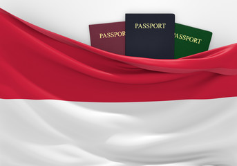 Travel and tourism in Indonesia, with assorted passports