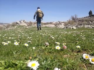 kır çiçekleri arasında gezinti