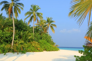 The Maldives Beach Landscape view on Vacation trip