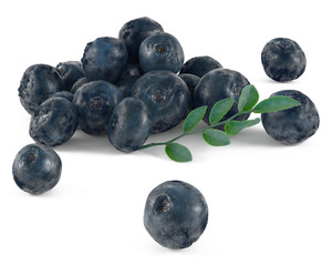Blueberries with leaves isolated