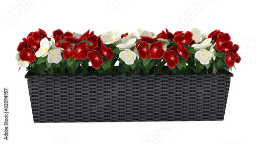 Window flowers in the box - 82094957