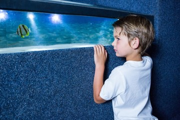Young man looking at fish in a small tank