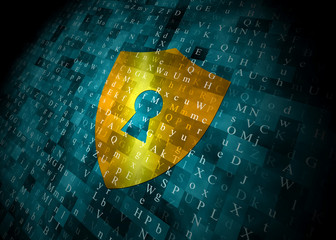 digital security shield