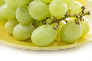 green grape consumed on yellow plate on white screen