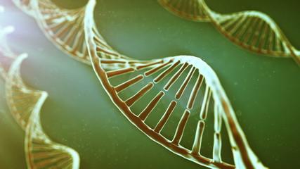 Rotating DNA